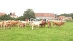 séminaire agricole A.jpg
